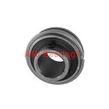 AMI UETBL206CEB Bearings